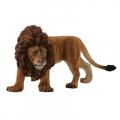 Африканский лев , L