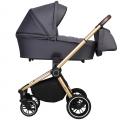 Детская коляска 2 в 1 CARRELLO  Epica CRL-8510/1  Iron Grey